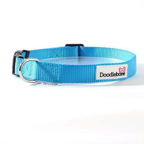Doodlebone Collar Medium Cyan