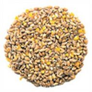Mixed Poultry Corn 1kg
